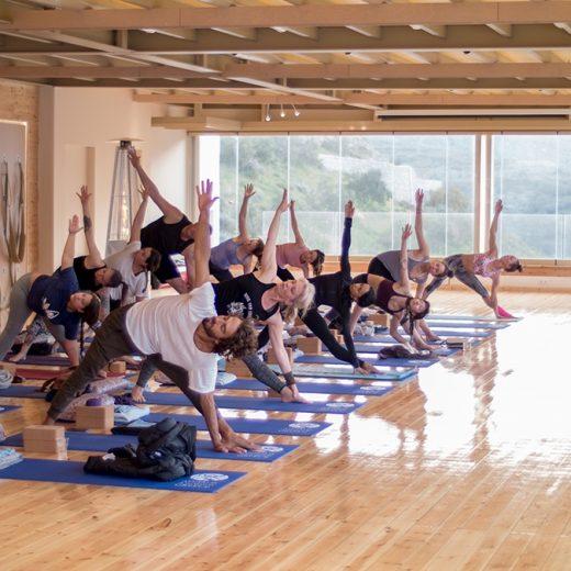 Elysia Yoga Convention 4